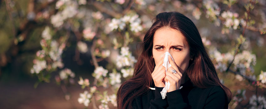 Why Do I Have Fall Allergies?